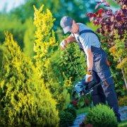 Baumpflege Haustechniker HAUS