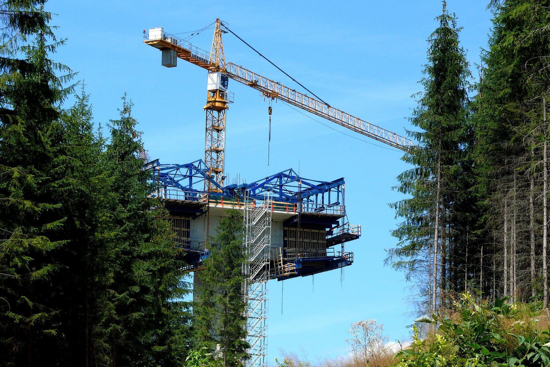 Umweltbaubegleiter Baustelle Wald